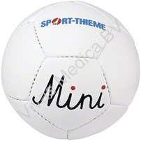 Fysio, Materialen, Ballen, mini handbal, diameter 48 cm, 250 gr