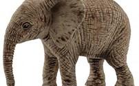 Afrikaanse Baby Olifant
