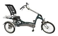 Easy Rider, Driewieler, Fiets, Van Raam, Met Silent Elektro motor, Van Raam